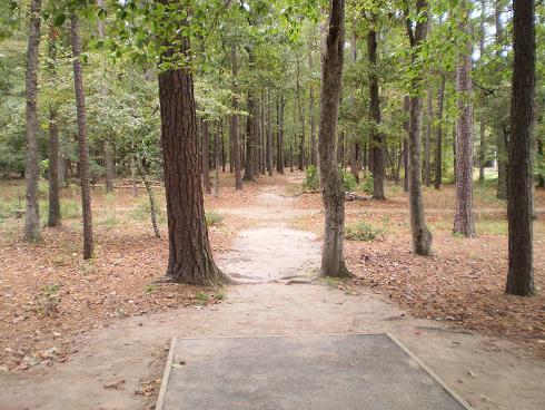 B. Cordell Disc Golf Course at Arnette Park
