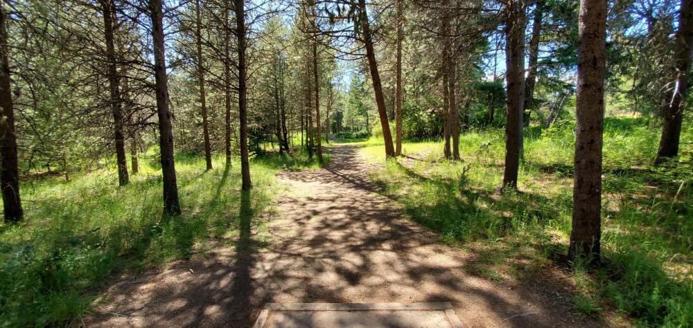 Farragut State Park - A.W.O.L.