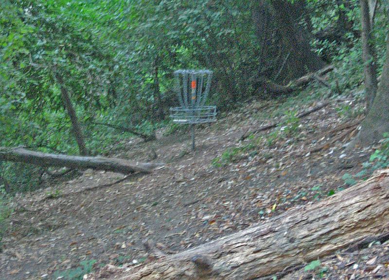 Black Mouse Disc Golf Course