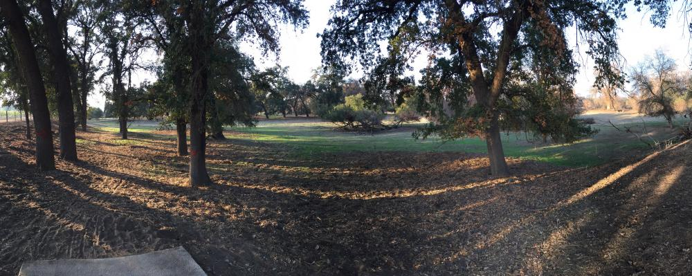 Kings River Disc Golf Course