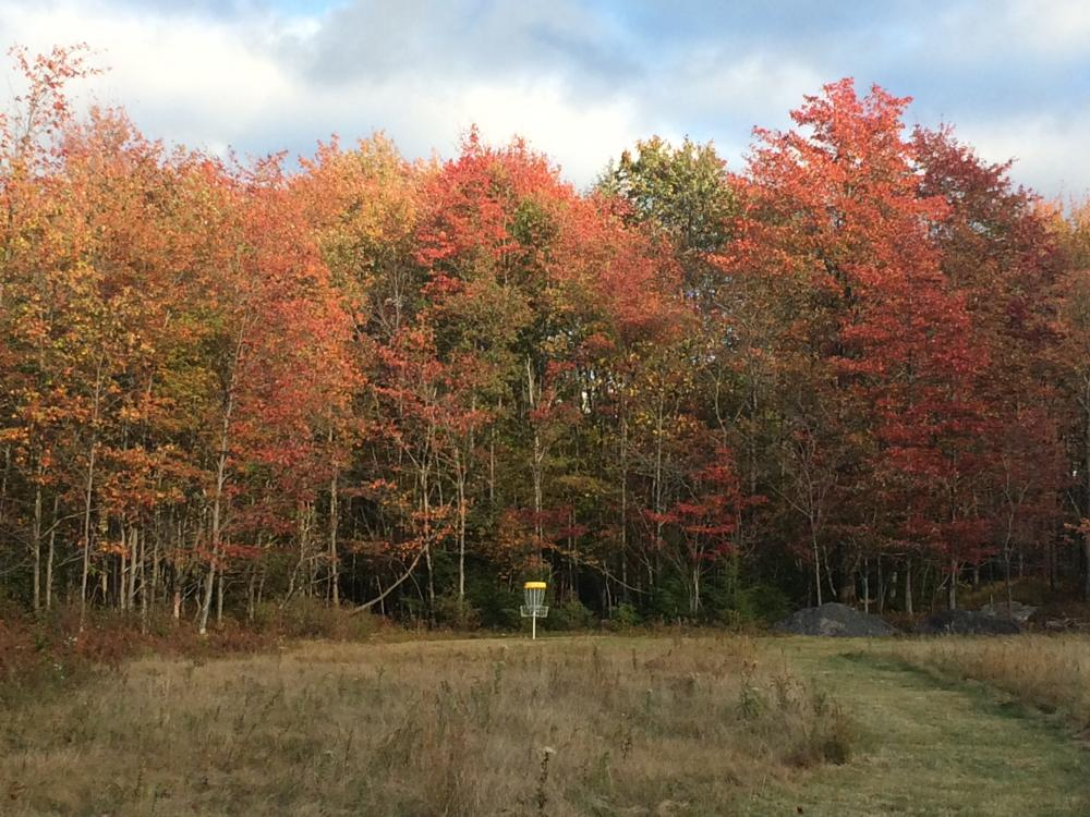 Blackwater Falls State Park Disc Golf Course